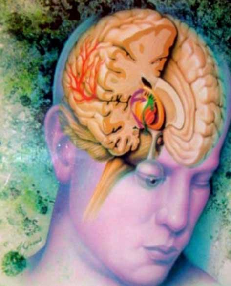 Fique de bem com seu cérebro