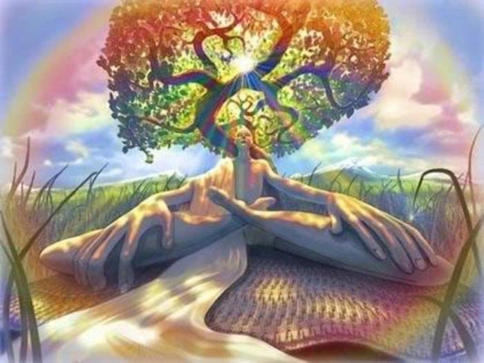 A árvore humana