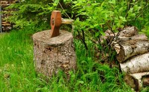 Ax-Handle-wood-cutting