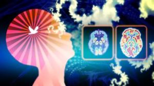 meditationbrain2